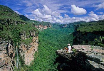 zonas brasileñas naturales: definición y descripción