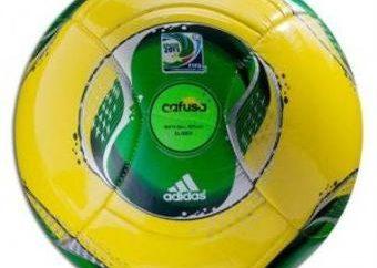 Coupe des Confédérations 2013