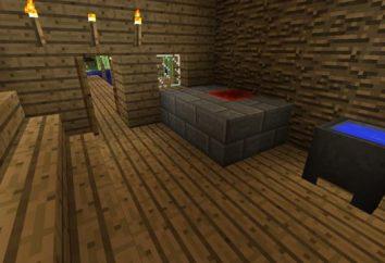 """Come costruire una sauna in """"Maynkraft"""" e che esso dovrebbe includere?"""