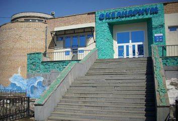 Vladivostok Oceanário: fotos, horário de funcionamento, endereço
