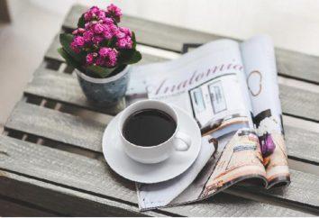 Kurs na jedzenie i napoje. Przegląd pomieszczeń dla restauracji i kawiarni
