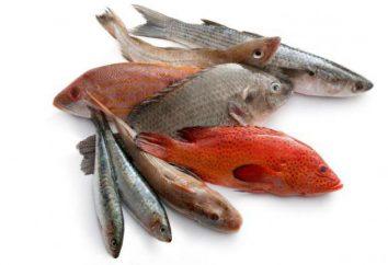Propriétés, les meilleures recettes, les dommages et les avantages du poisson. L'utilisation du poisson rouge