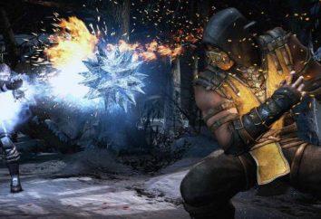In un gioco di combattimento su PC dovrebbe svolgere?