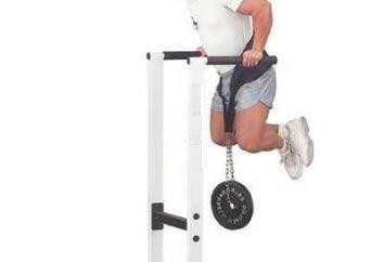 Dips: sur quels muscles sont la charge? Comment faire des pompes sur les barres