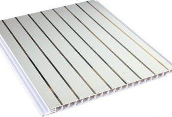 Decoración de las paredes con paneles de plástico. paneles de plástico de acabado de la pared de la tecnología