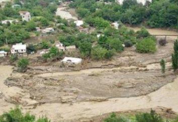 En Georgia, la inundación: causas, consecuencias liquidación