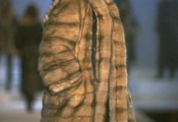 Comment modifier le manteau avec vos mains: le motif. Alter un vieux manteau: quelques idées