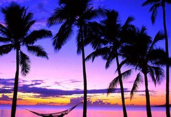 Viaje a las Islas Fiji