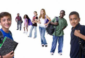 Psychologiczne i edukacyjne wsparcie – wsparcie indywidualne w …: definicja i cechy