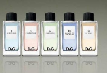 Eau de Toilette Dolce Gabbana 3 l Imperatrice: descripción, comentarios