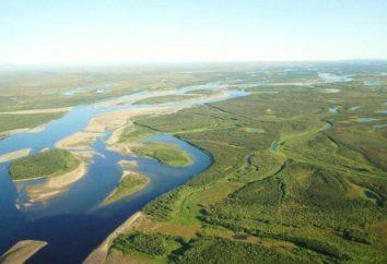 Dans une mer de flux Anadyr River. Anadyr rivière Description