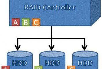 Disk Arrays RAID: Was ist das und was denn?