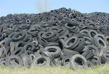 Business idea: riciclaggio di pneumatici
