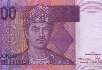 Roupie indonésienne. Et historique des taux de change