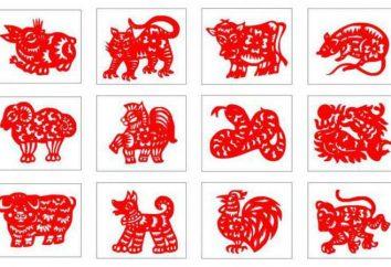 Segno zodiacale cinese: caratteristico