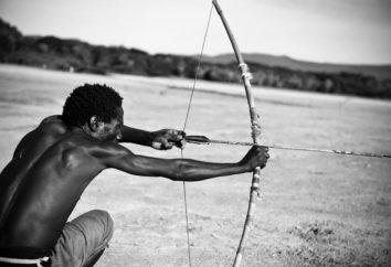 Broń Bow: historia wyglądu i użytkowania przykładów. łucznictwo