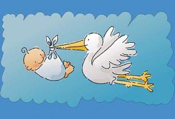 Stork mit einem Baby – der Wert der Symbole