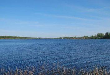 Jezioro Orlinskoye: zbiornik opis. Ożywiającym i fauny jeziora Orliński