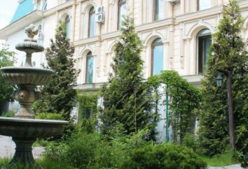 """Park Hotel """"Kartmazovo-Vnukovo"""": indirizzo, numero di telefono, descrizione delle camere, servizi"""