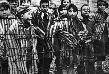 sistema di campo di concentramento nazista come uno strumento