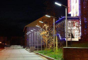 Oświetlenie zewnętrzne LED: niskie zużycie baterii, bezpieczeństwo ruchu drogowego, ochrona środowiska
