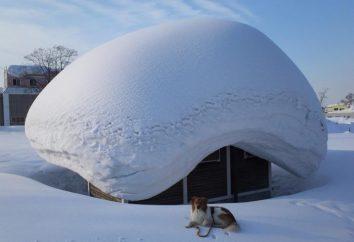 Weiß und flauschig … Warum träumst du, dass es geschneit ist?