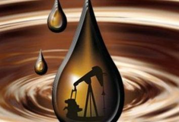 La benzina – è … Tipi di benzina, le loro caratteristiche