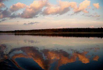 Jezioro Lacha: rybołówstwo, łowiectwo i obszary chronione