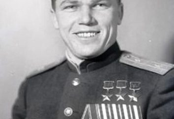 Kozhedub Ivan Nikitivich: uma breve biografia. O piloto de caça soviético legendário