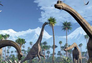 Dinozaury wyginęły? Gdy dinozaury wyginęły?