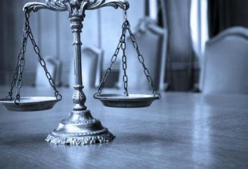 Das Konzept, Elemente und Merkmale eines Verbrechens. Charakteristische Elemente der Straftat