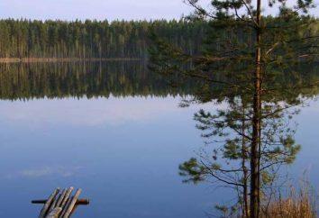 Pociągający jezioro Mari Eł