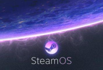 Was ist Steam? Die Installation und Nutzung