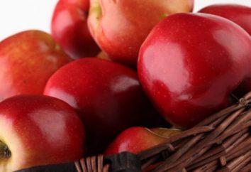 """Apple Tree """"Glória aos vencedores"""": a descrição das variedades, cuidado, foto"""