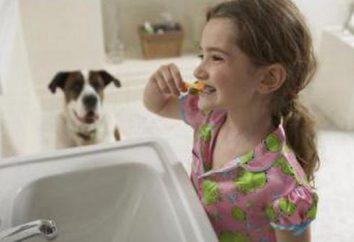 Quale migliore tenuta sui denti davanti? La scelta del materiale