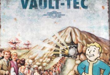 """Gioco Vault Fallout 3. """"Fallout"""" nel mondo: una visione d'insieme, il passaggio"""