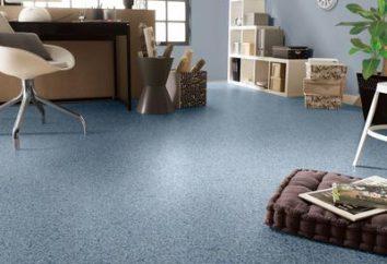 Linoléum « Tarkett » semi-commercial – plancher de qualité à un prix abordable