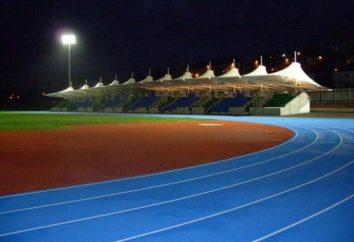 Atletismo en Yaroslavl. Pros y los contras de atletismo de los niños