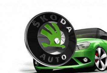 """""""Skoda Fabia"""": specyfikacje odprawy, test drive i zdjęcia"""