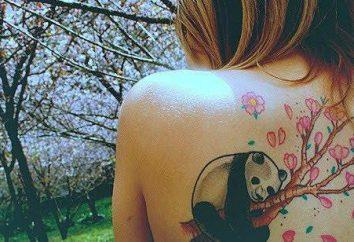"""Tattoo """"Panda"""": die Werte und die grundlegenden Eigenschaften"""