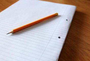 """Essay: """"Wer eine Leistung durchführen kann?"""": Die Struktur des Essays und Empfehlungen zum Schreiben"""