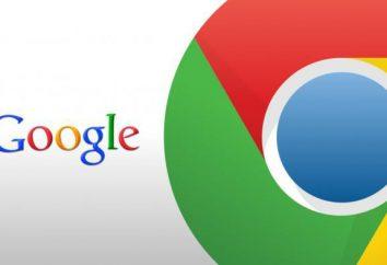 extensiones útiles para Google Chrome: lista, cita, describiendo