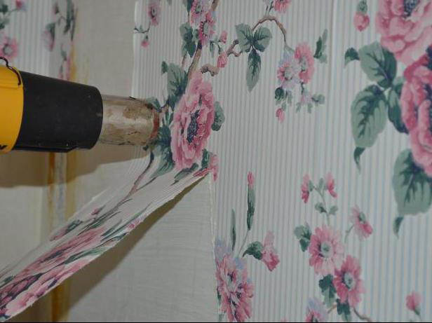 alten tapetenkleister von wand entfernen