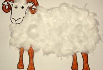 Artigos de lã, algodão e papel com suas próprias mãos
