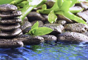 Zen è … Zen Buddismo