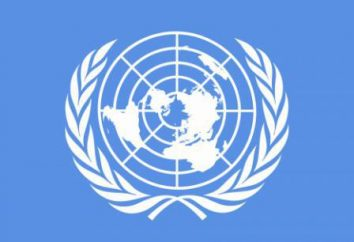 Sources du droit de la sécurité internationale. Le système de sécurité collective