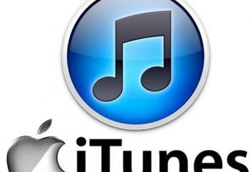 Jak zainstalować iTunes na komputerze? Instrukcje instalacji i aktualizacji