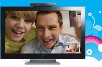 """Las respuestas a la pregunta acerca de cómo restaurar el """"Skype"""""""