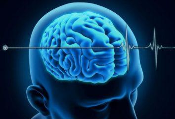 La muerte cerebral. Una declaración de la muerte. aparente muerte