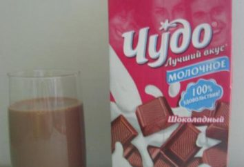 """""""Cud"""" – czekolada mleczna. Jak zrobić mleko czekoladowe: przepis"""